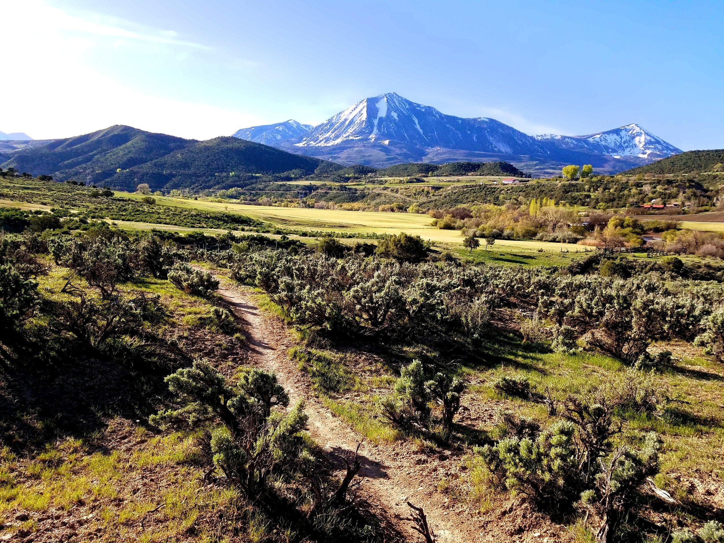 Mt. Lamborn thumbnail