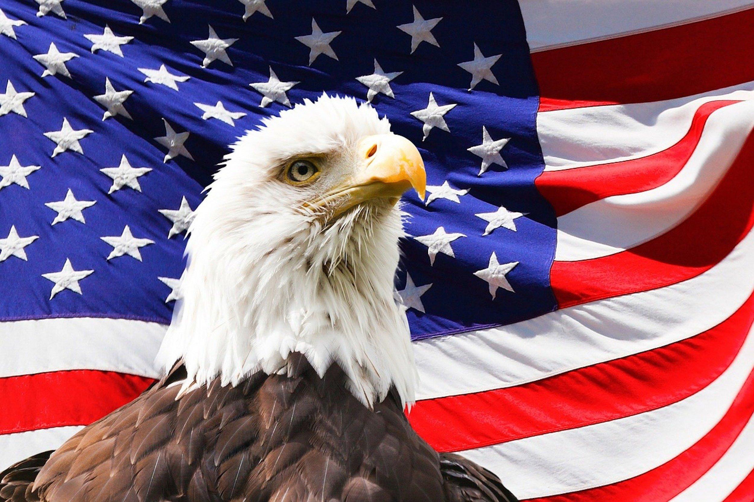 Eagles celebrate a win in Aspen Glen thumbnail