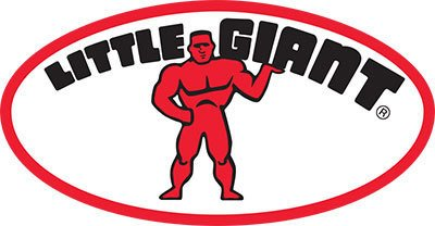 Little Giant thumbnail