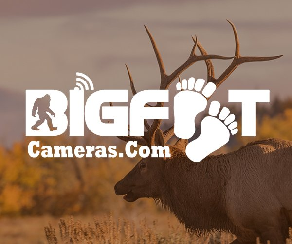Bigfoot Game Cameras thumbnail