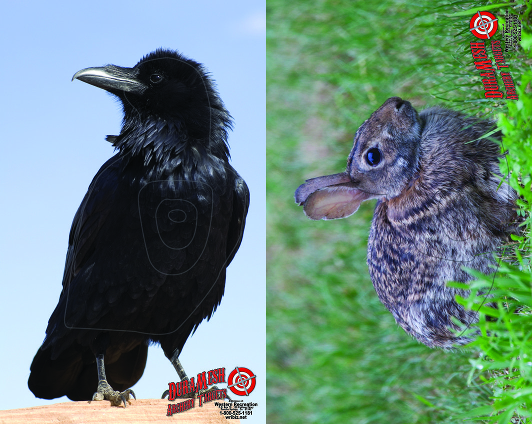 DM210 Crow-Rabbit thumbnail