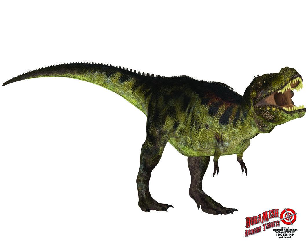 DM302 Dino #2 thumbnail
