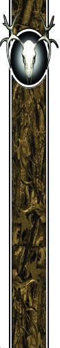 #AW603 7″ Deer Skull thumbnail
