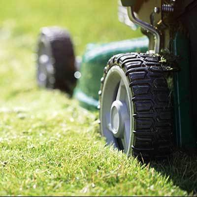 Green power mower on lawn