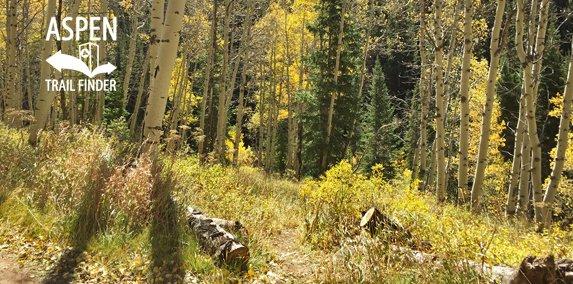 Dexter Park Trail thumbnail