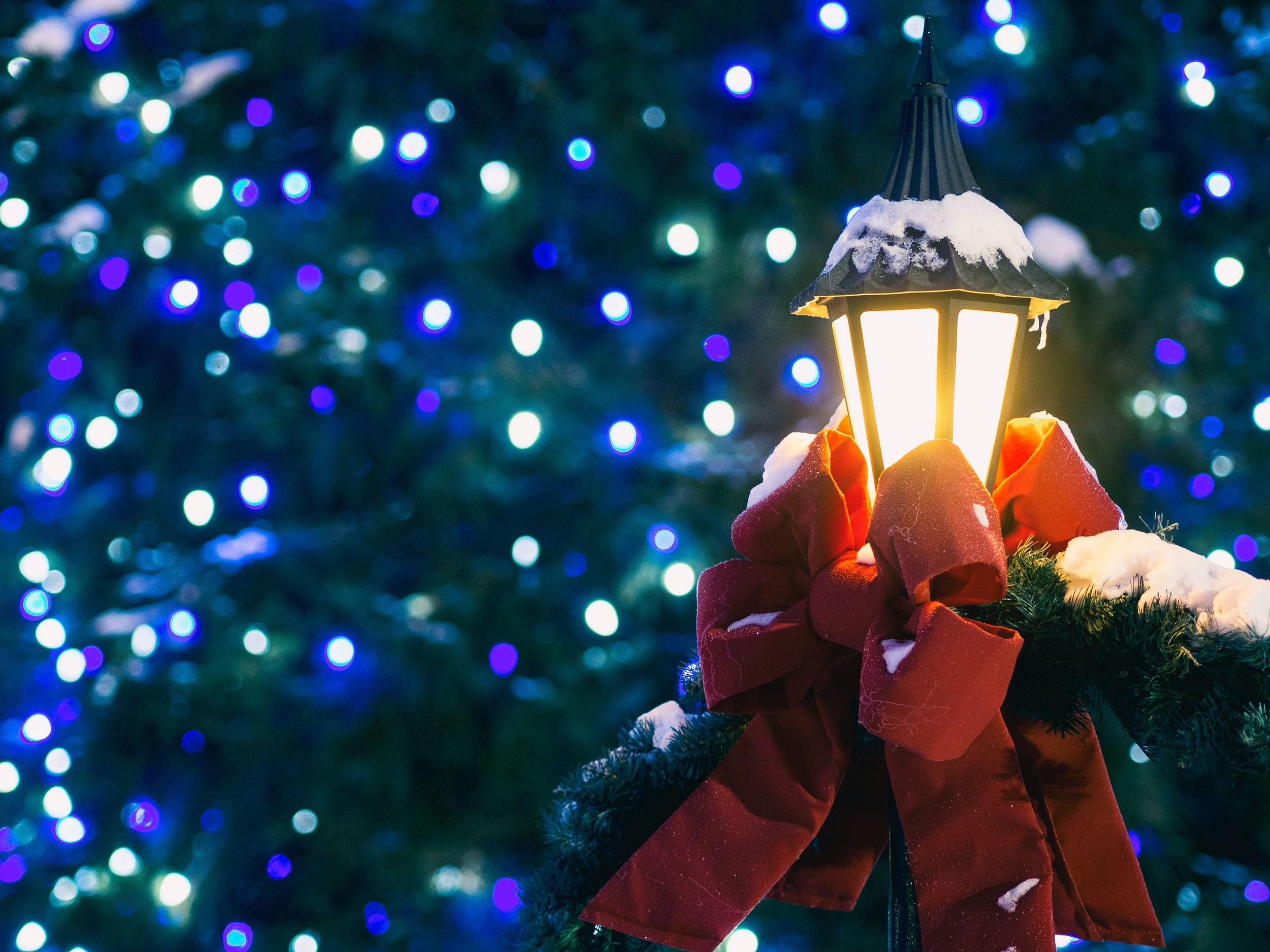 Holiday lights and street lamp