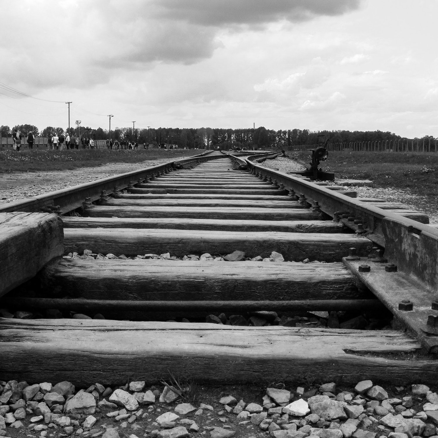 Train tracks, Photo by Mateus Campos Felipe on Unsplash
