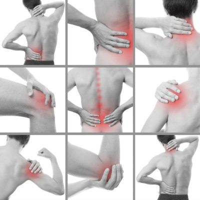 Back pain highlights