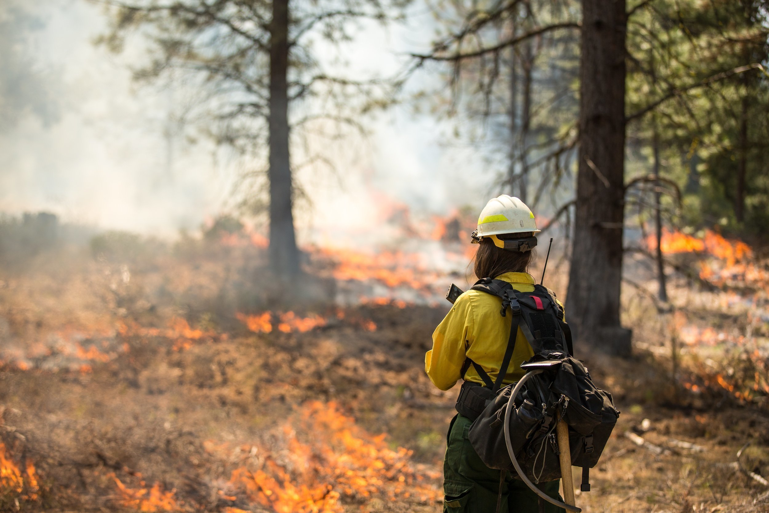 5 Tips for Wildfire Safety & Prevention thumbnail