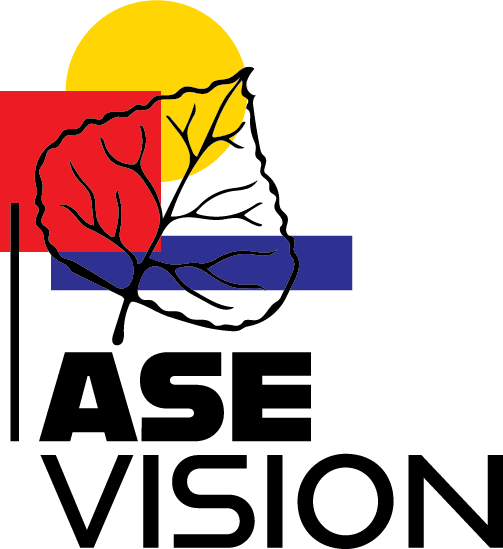 ASE Vision