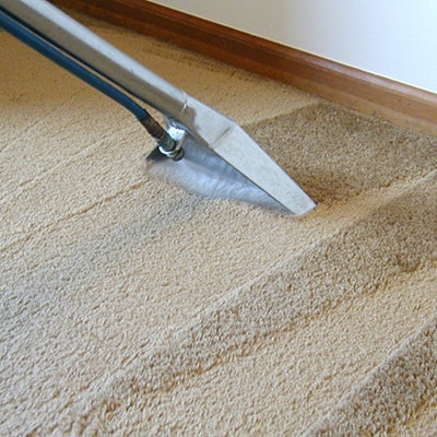 Rug & Carpet Cleaning thumbnail