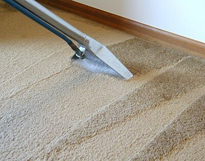 Rug & Carpet Cleaning Rental thumbnail