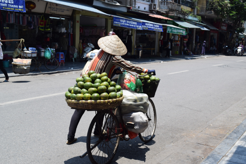 Female fruit seller in Hanoi