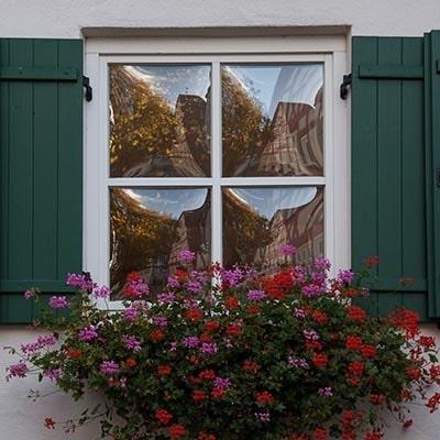 Windows/Skylights thumbnail