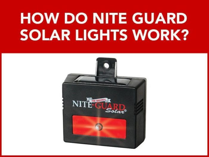 Photo of Nite Guard solar light with text: How Do Nite Guard Solar Lights Work?