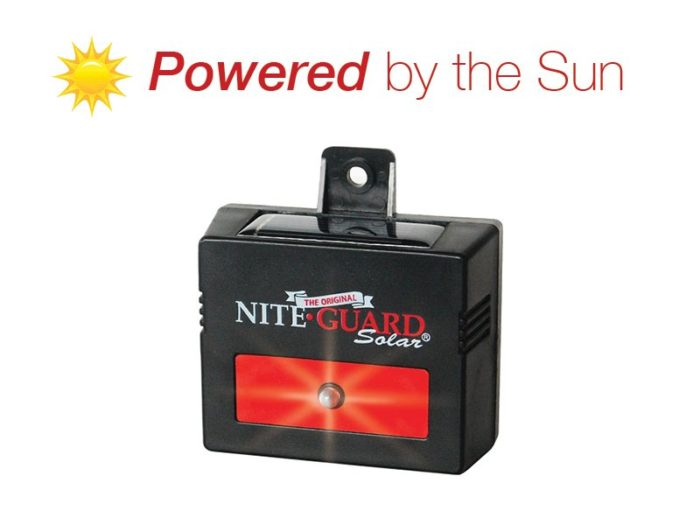 Nite Guard Solar light with text: Powered by the Sun