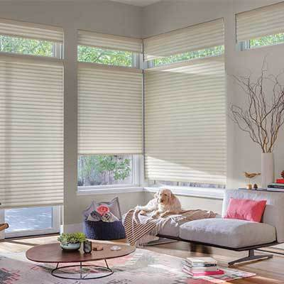 Window Fashions thumbnail