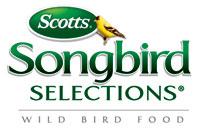 Song Bird thumbnail