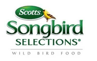 Scotts Song Bird thumbnail