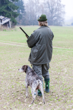 Hunter with Dog Hunting
