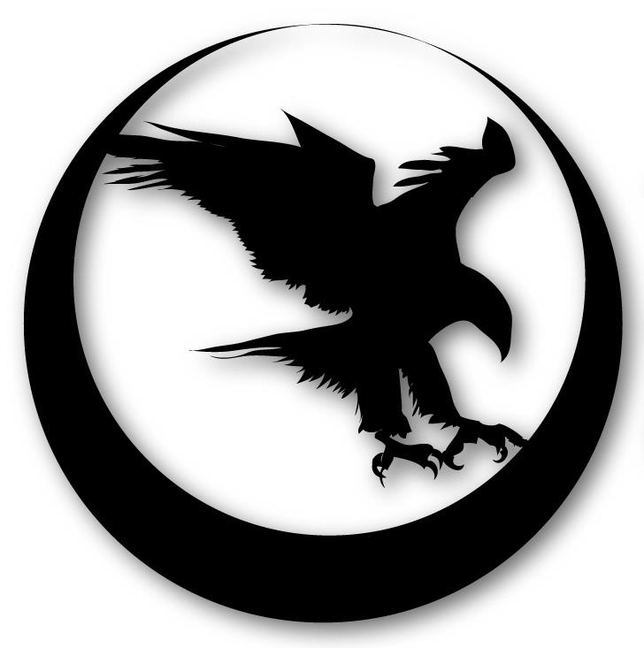 Nighthawk Custom thumbnail