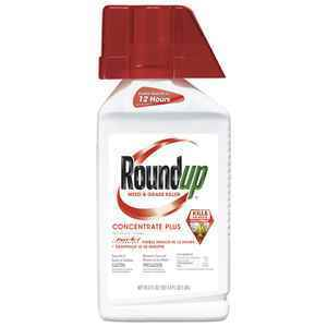 Roundup Concentrate Weed and Grass Killer thumbnail