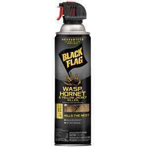 Black Flag Wasp Killer thumbnail