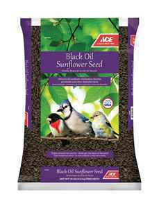 Ace 10lb Black Oil Sunflower Seed thumbnail