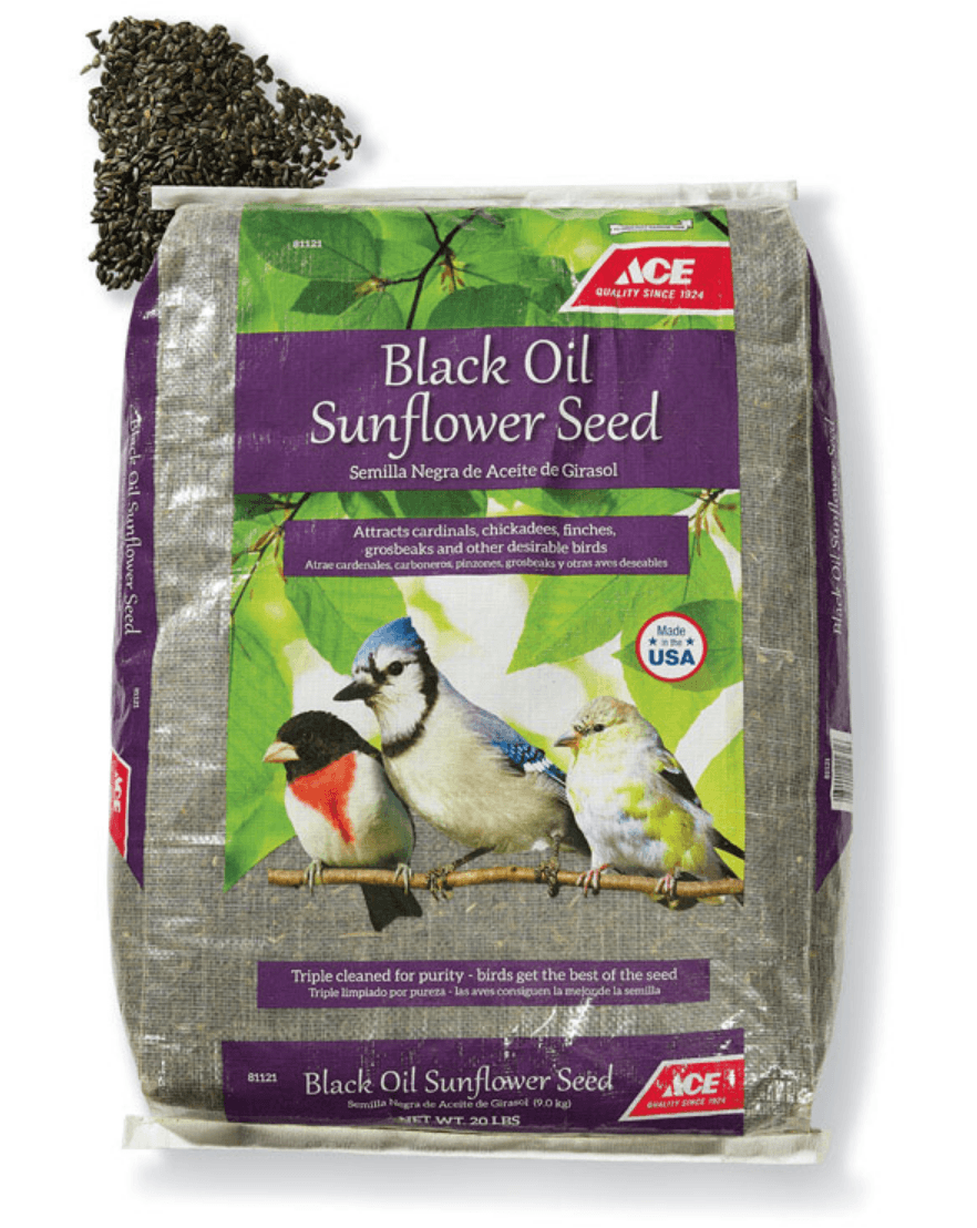 Black Oil Sunflower Seed, 20 Lb. thumbnail