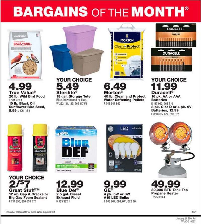 January Bargains of the Month