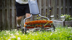 Image of man cutting grass with reel mower.