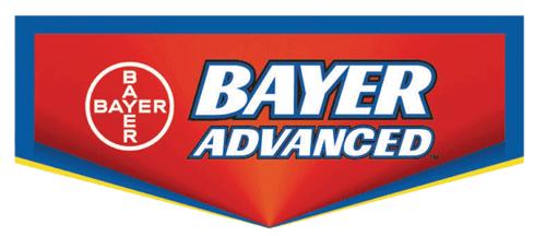 bayer thumbnail