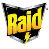Raid thumbnail
