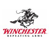 Winchester thumbnail