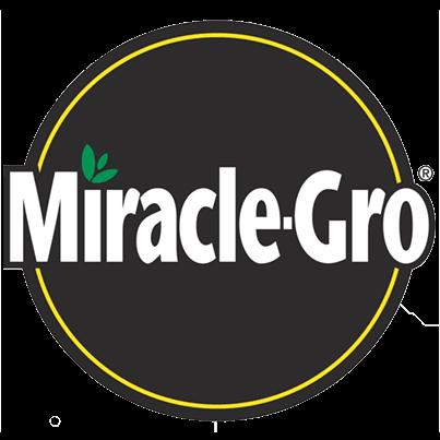 Miracle Gro thumbnail
