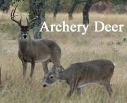 archery_deer