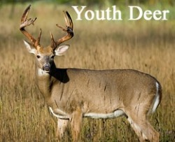 youth_deer