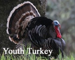youth_turkey
